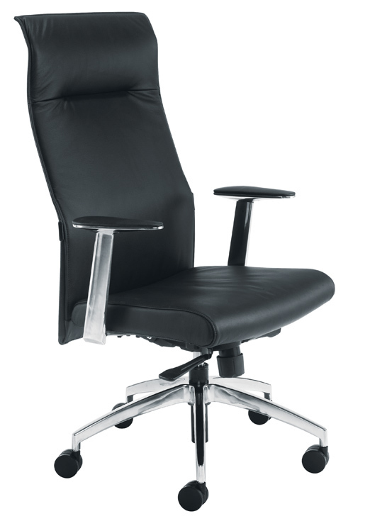 Entire Office Chairs